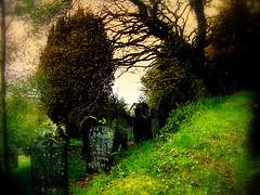 blog_helton_gravesite_pic